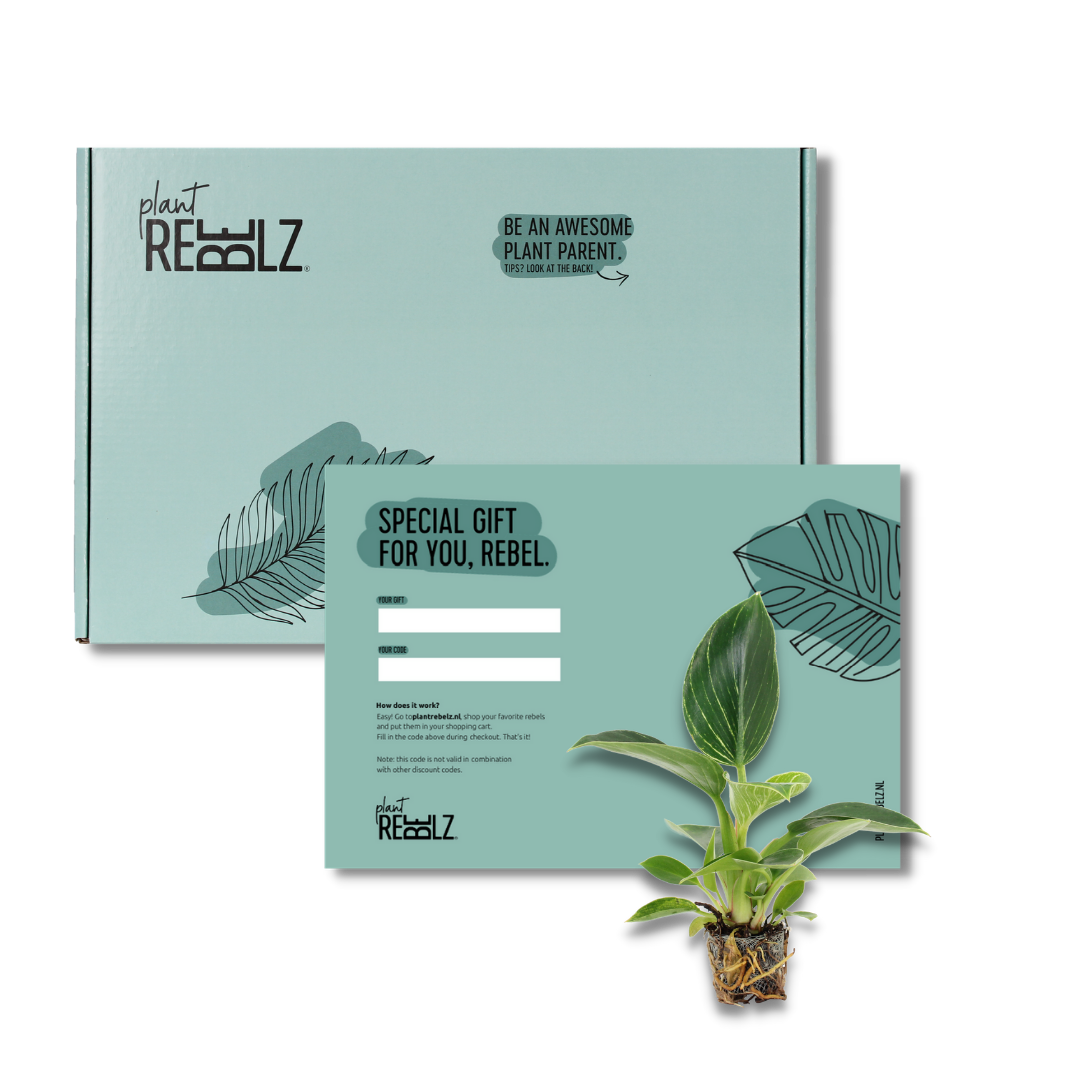 Giftcard Plant Rebelz
